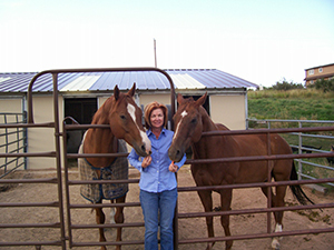 Sue and horses
